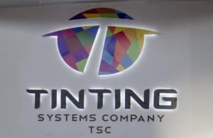 Ting Ting ECS 2015 4